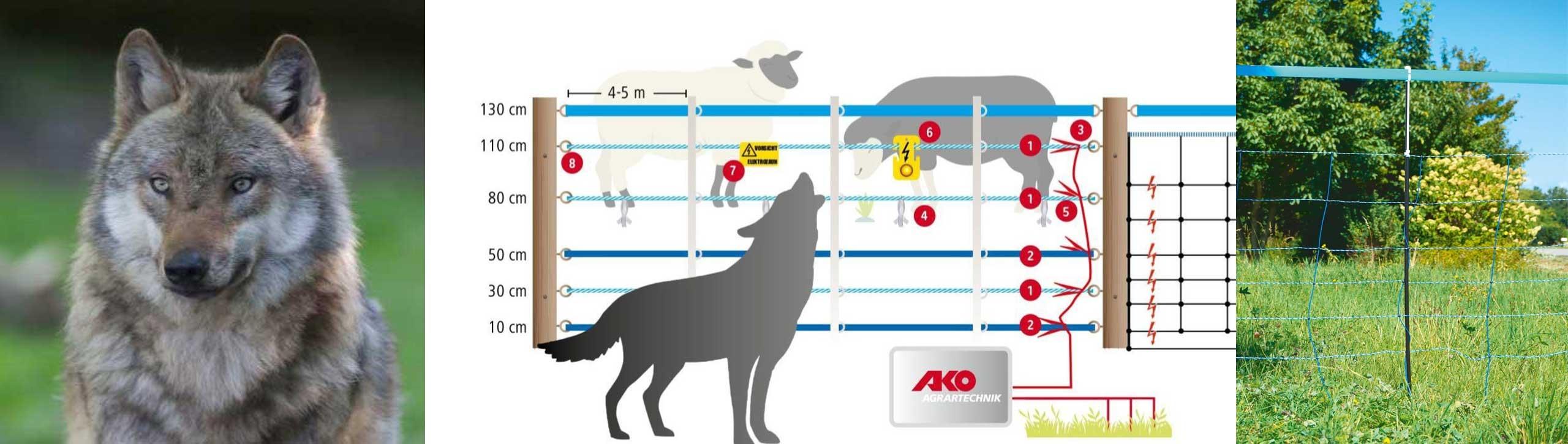 Wolfabwehrnetz