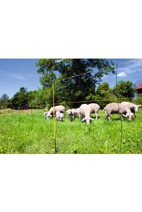 Schafnetz mit Bodenabstand