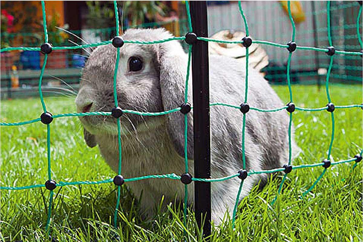 Kaninchenzaun